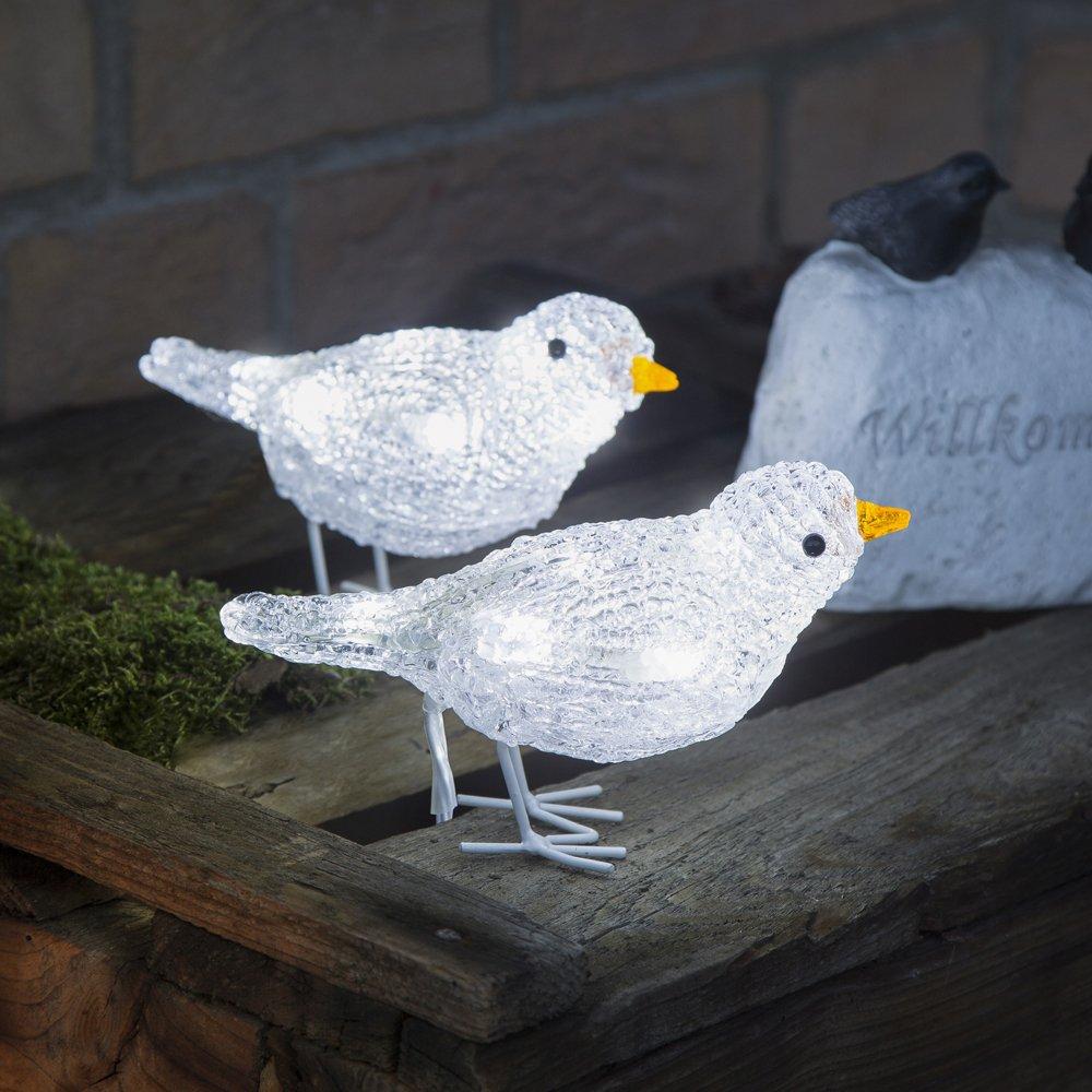Schattige buitendecoratie LED Vogelkwintet